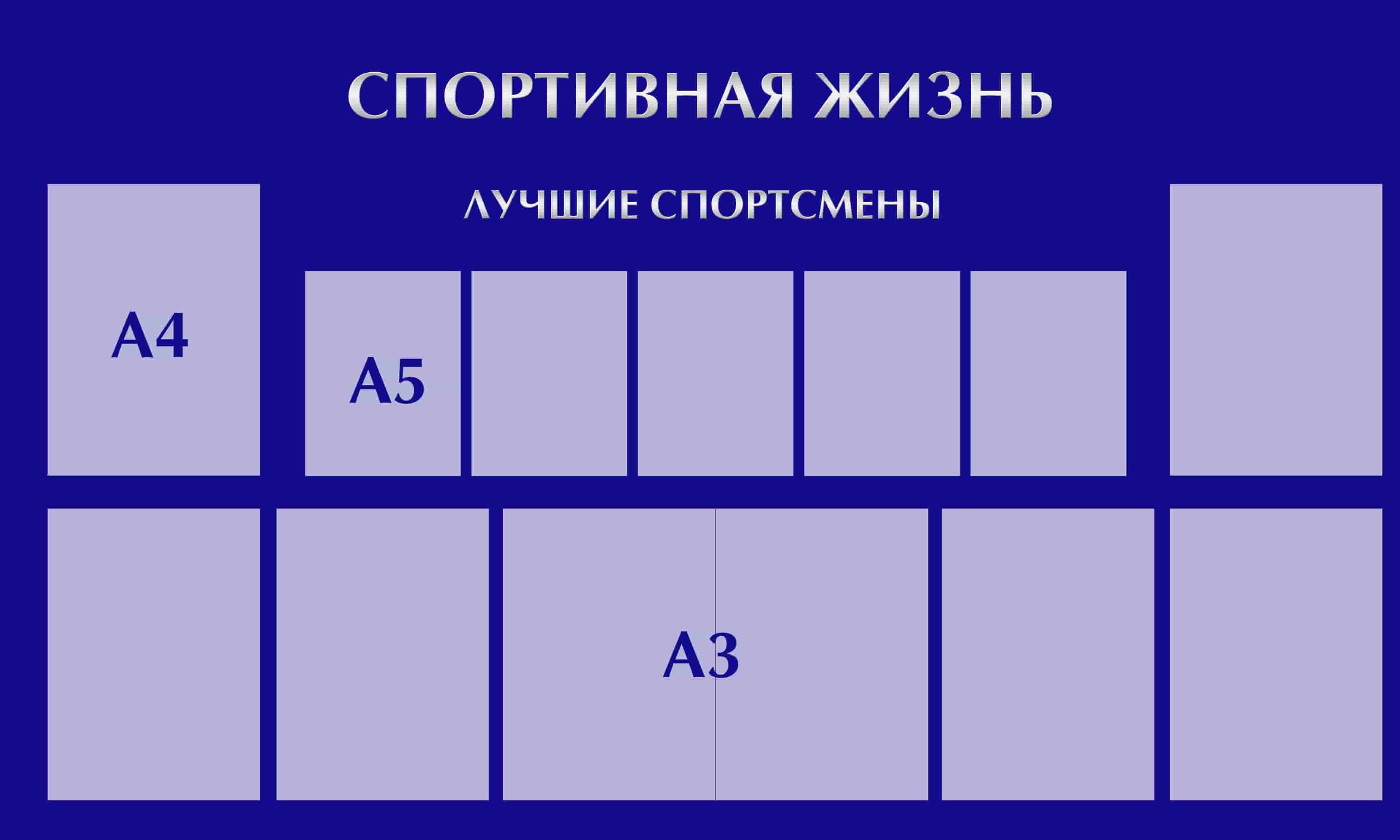 sportivnaya-zhizn_2