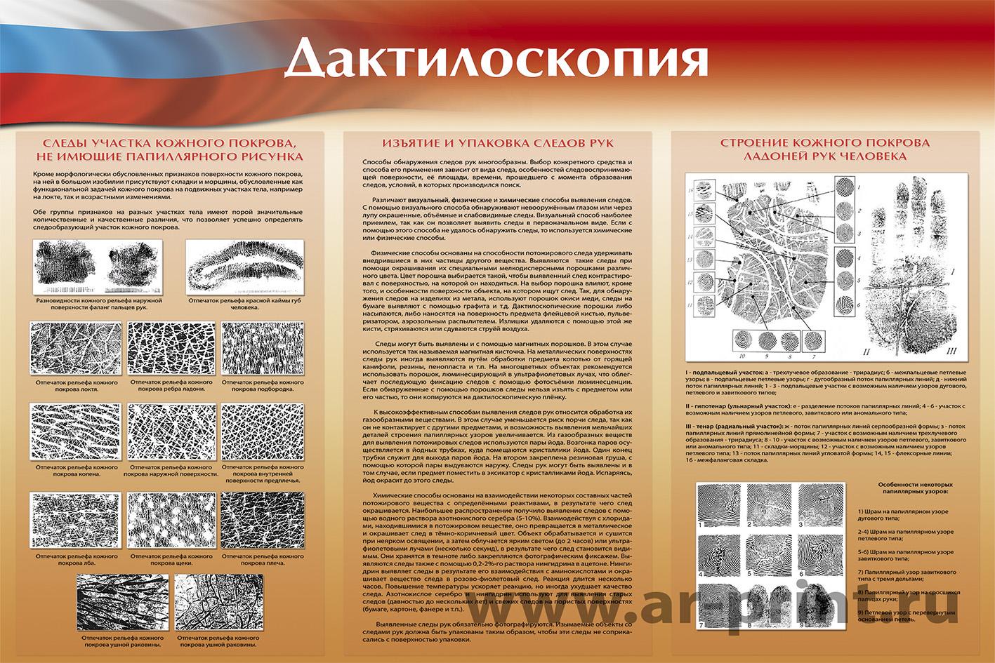 Дактилоскопия