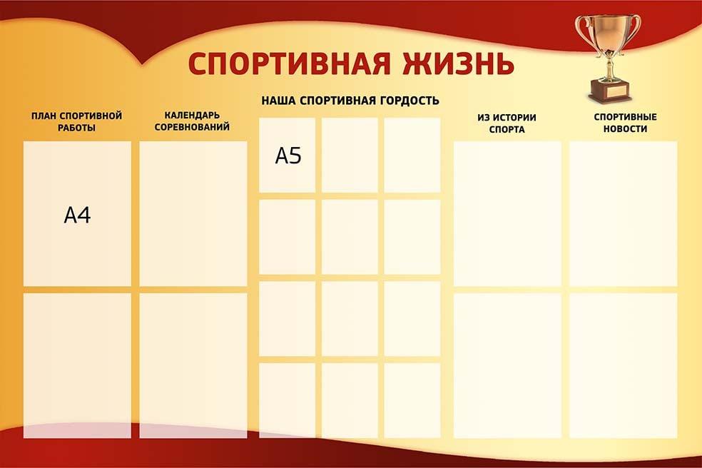 sportivnaya-zhizn-shkoly1-min